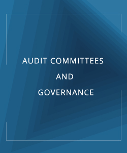 AUDIT COMMITEES AND GOVERNANCE
