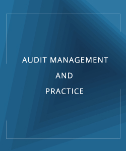 AUDIT MANAGEMENT AND PRACTICE