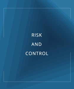 RISK AND CONTROL